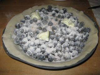 Berries in pie 2