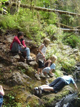 Contemplating a Creek