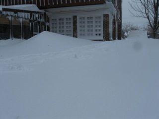 Blizzard back corner 2