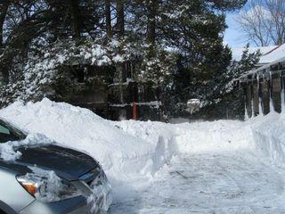 Post shoveling 2