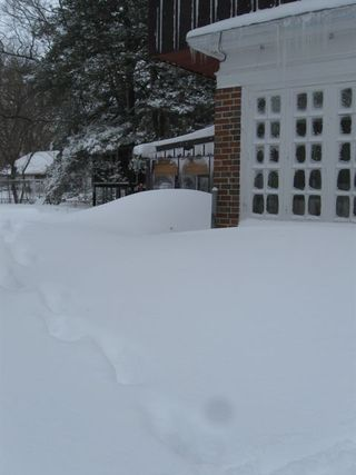 Blizzard back house corner 1