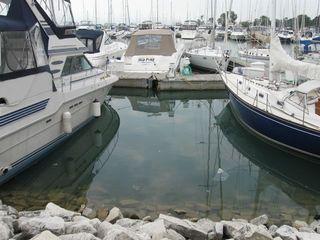 Harbor 5