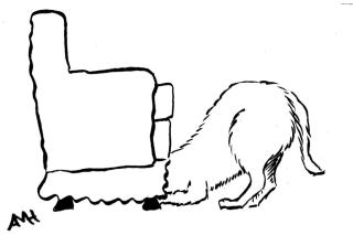 46 dog under couch w sig