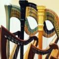 Anne Morse-Hambrock Harp Instructor
