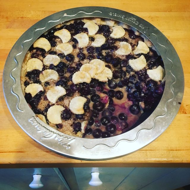 Blueberries and cream pie w pie shield Back To Betty Overbooked and Underpaid