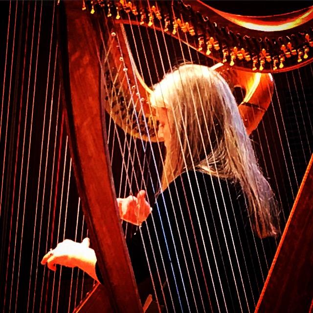 Anne Morse-Hambrock 2 harps