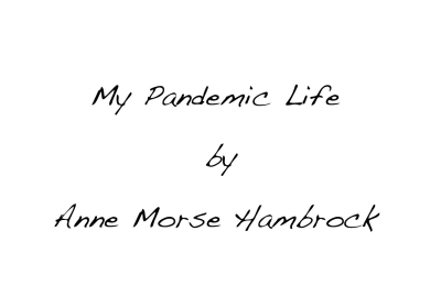 -pandemic title slide 1 ip