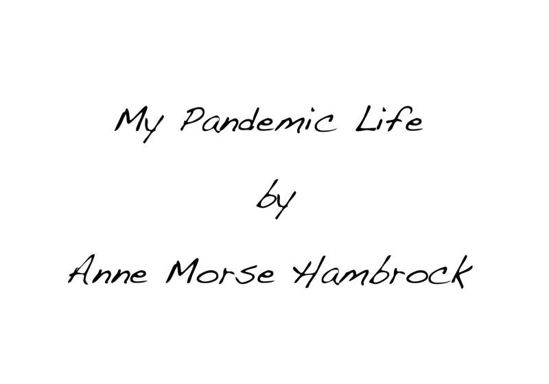 -pandemic title slide 1 ip